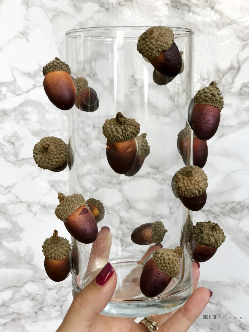 Fall Decor with Dollar Store Supplies - DIY Acorn Vase - Dollar Store DIY decor 1 - This is our Bliss