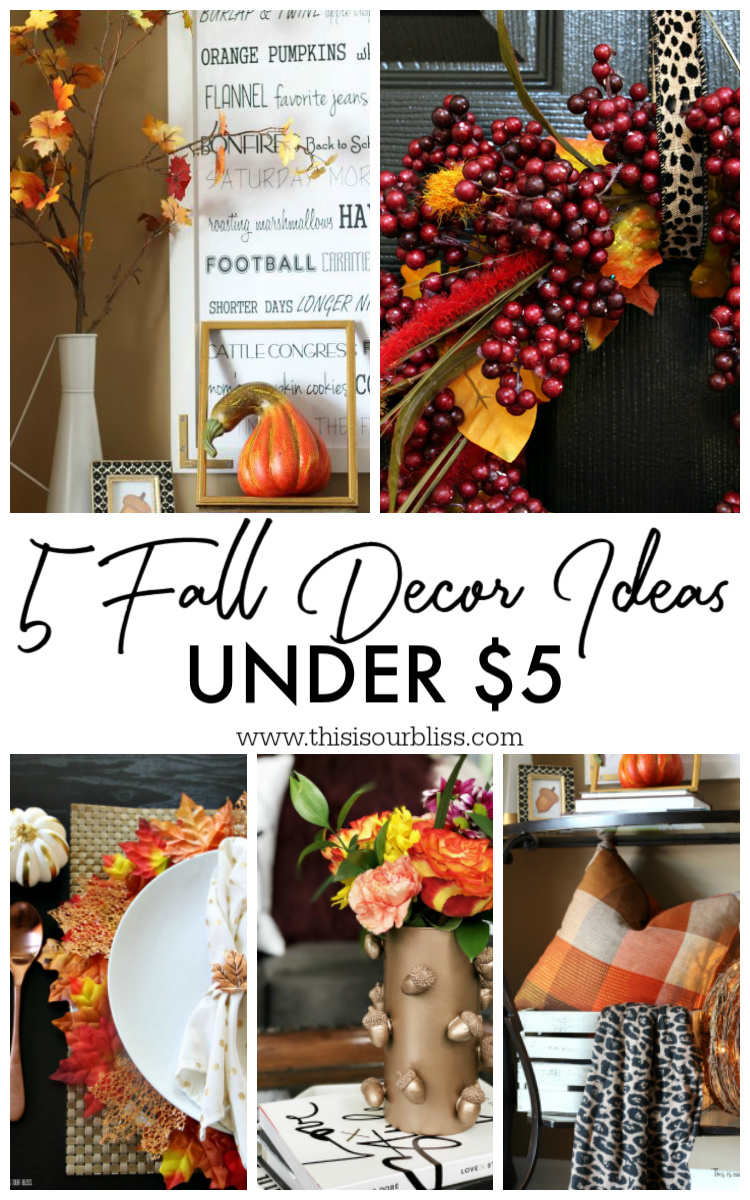 Five Fall Decor Ideas under $5 - inexpensive Fall decorating ideas - This is our Bliss