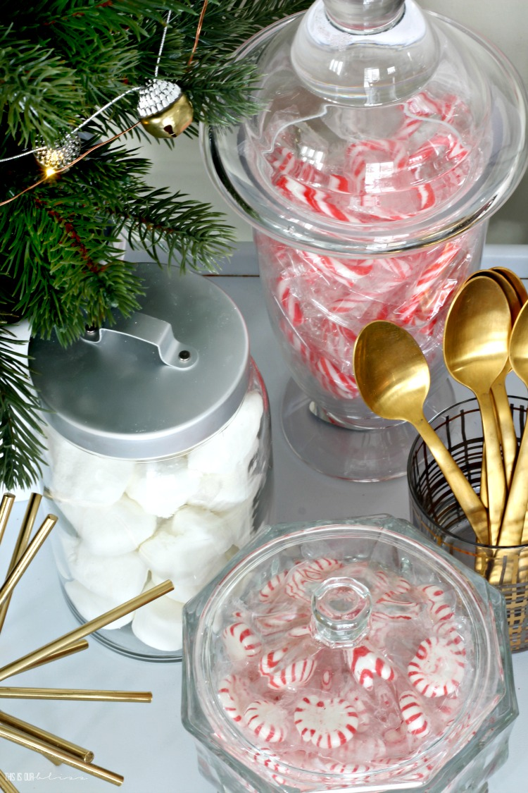 Hot Chocolate bar with peppermints marshmallows candy canes - This is our Bliss