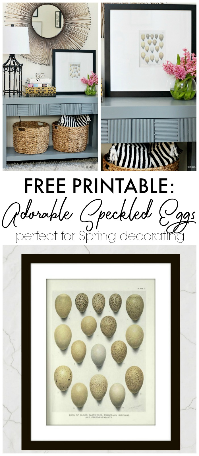 Adorable Speckled Eggs Free Printable for Spring - Darling Egg art perfect for Spring decorating - This is our Bliss