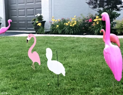 Summer Flamingo Party - This is our Bliss